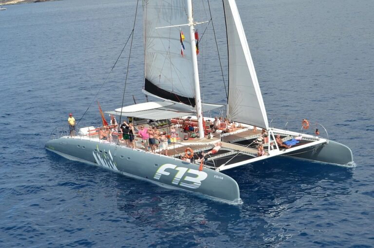 Book tours, activities, and attractions in Tenerife Freebird One wale and dolphin watching in Tenerife